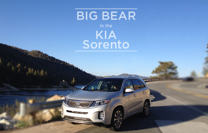 Big Bear in the Kia Sorento