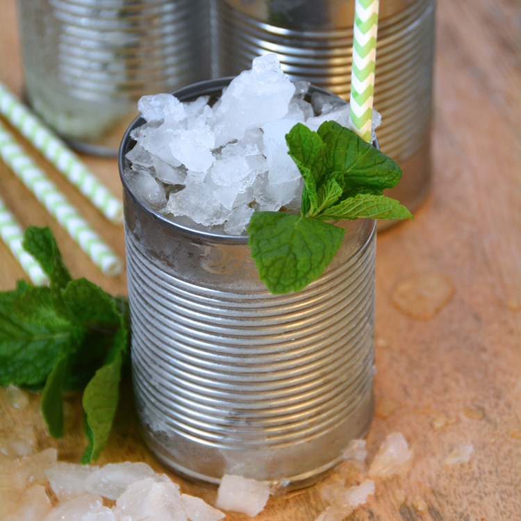 This Girl's Mint Julep