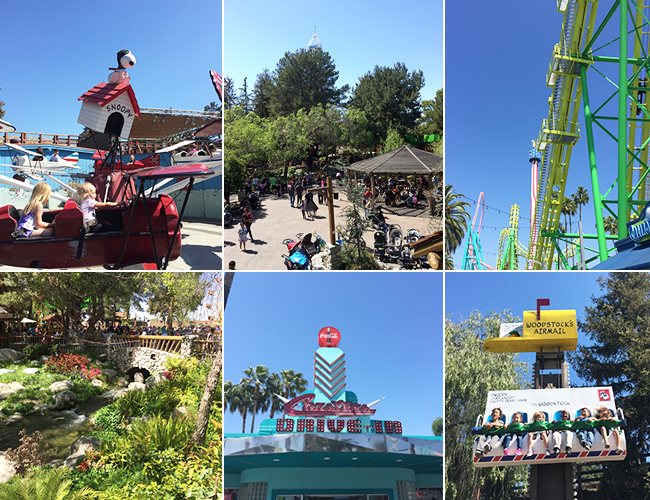 knotts berry farm in spring