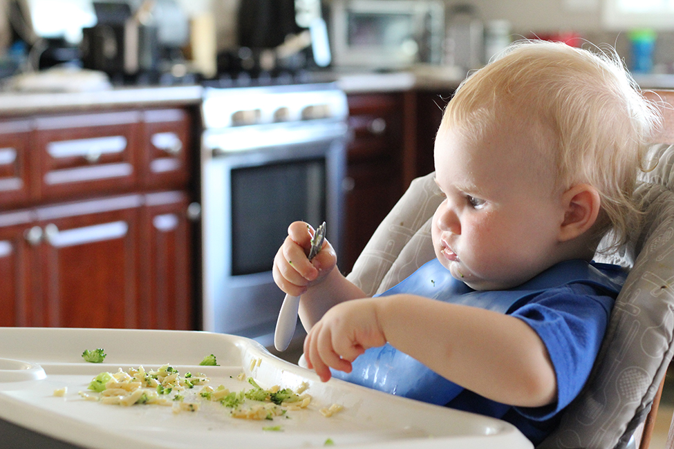 baby food love