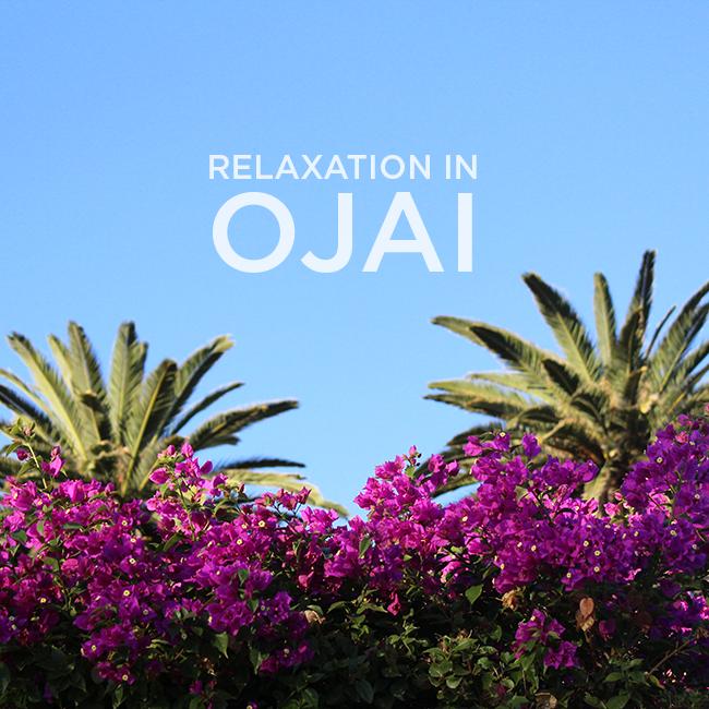 relaxationinojaiflowers
