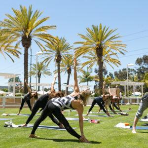 Yoga on the Lawn, San Diego