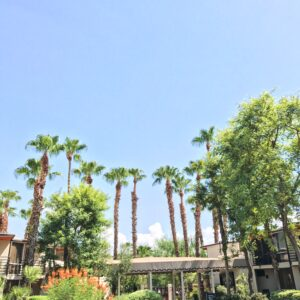 The Riviera Palm Springs